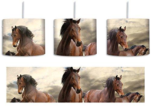 Western Pferde Cowboy inkl. Lampenfassung E27, Lampe mit Motivdruck, tolle Deckenlampe, Hängelampe, Pendelleuchte - Durchmesser 30cm - Dekoration mit Licht ideal für Wohnzimmer, Kinderzimmer, Schlafzimmer (Western-stil Lampenschirme)