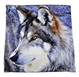 Kissenhülle Kissenbezug Wolf Tiermotiv Wolfsmotiv Wölfe Kissen Wolf
