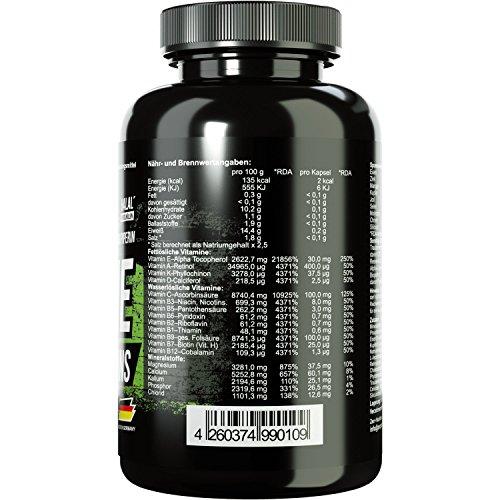 ZEC+ ALL in ONE ANTIOXIDANT & VITAMIN | Multivitamin-Präparat mit Antioxidantien und optimalem Wirkstoffkomplex | alle Vitamine und Mineralien | Spurenelemente | zusätzlich Traubenkernextrakt | Alpha-Liponsäure |
