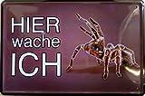 Blechschild Schild - Spinne Vogelspinne Haustier