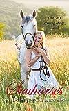 Seahorses by Christina Clover