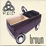 Songtexte von P.O.D. - Brown