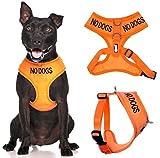 Kein Hunde (Nicht Gut mit Andere Hunde) Orange Farbcodierung Non-Pull Vorne und Hinten D-Ring Gepolstert Wasserfest Weste Hundegeschirr verhindert, Dass Unfälle von Warnung Ihrer Beim Fortgeschritten