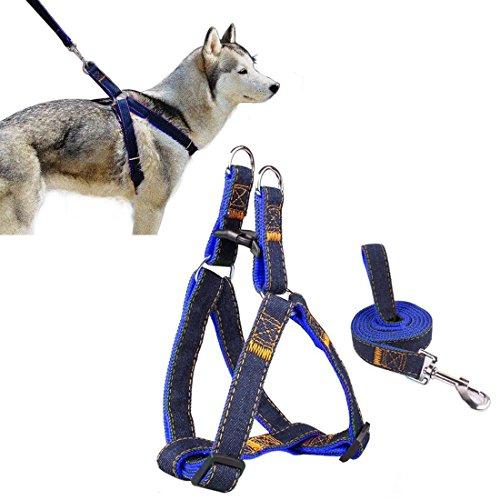 CUGLB Softgeschirr mit Leine Brustgeschirr Hunde Geschirr Sicherheitsgeschirr Denim Leine für Haustiere Hunde Verstellbare Reflektierende Sicherheit Leine Haustier Nylon Leine Softgeschirr (Blau, L)