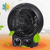 Aigostar Airwin Black 33IEL- Calefactor de aire con termostato regulable, potencia de 2000 watios, función de aire caliente de dos niveles o ventilador con temperatura ambiente, color negro. Protección contra el sobrecalentamiento. Diseño exclusivo.