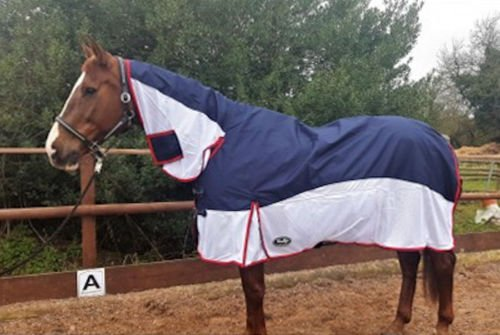51W17OnEc4L BEST BUY UK #1Gallop Turnout Fly Rug Combo, Great 2 in 1 Rug, Fixed Neck Cover 56 price Reviews uk