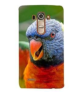 EPICCASE terrific parrot Mobile Back Case Cover For LG G4 (Designer Case)