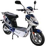 Rolektro eco-City 45 V.2 Blau-Silber Elektroroller 45 Km/H Straßenverkehrszulassung 500W E-Scooter entnehmbarer Akku