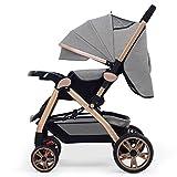 SI YU Poussette de bébé nouveau-né pour nourrisson pliant cabriolet convertible de luxe haute vue anti-choc Landau Poussette avec porte-gobelet durable roues (Couleur : Gris)