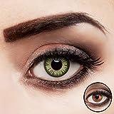 aricona Kontaktlinsen grün ohne Stärke intensiv farbige Jahreslinsen 2 Stück