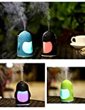 #8: Rich N Royal Mini Cool Mist Humidifier with 7 Color LED night Light Quiet Humidifier with Timed auto shut Off for Office Baby Room or Car