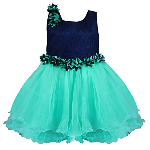 Wish Karo baby girls Party Wear Frock Dress DN fr1006sg