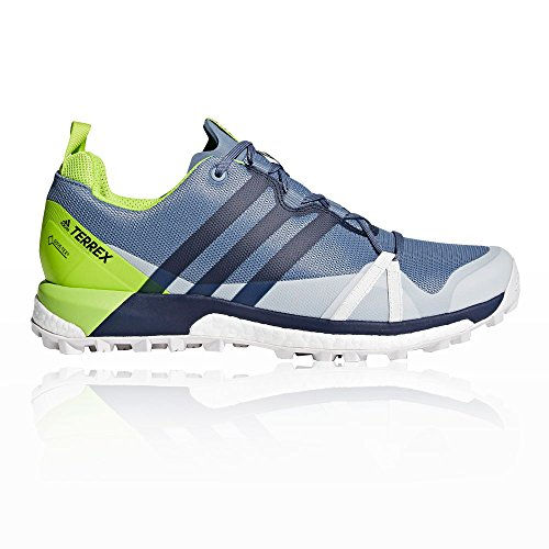 adidas Terrex Agravic Gore-Tex Chaussure Course Trial - SS18 green