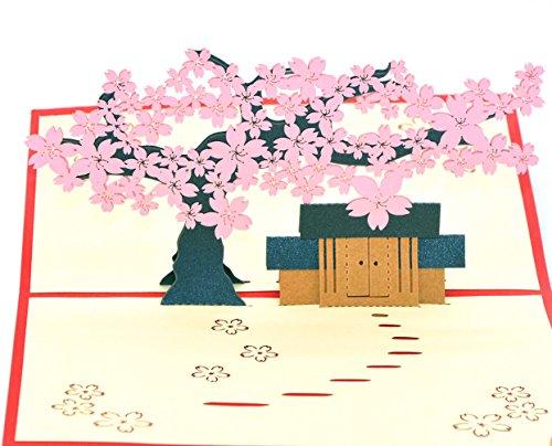 medigy 3D Pop up Grußkarten blanko Karten für die meisten occastions & # xff08; Die Hütte unter der Cherry Tree rose