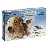 Capstar 11,4 mg für Katzen und kleine Hunde Table 6 stk