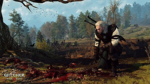 The Witcher 3 Game of the Year Edition screenshot