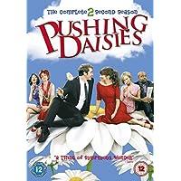 Pushing Daisies - Complete Season 2