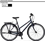 vsf fahrradmanufaktur T-300 Shimano Nexus 8-G HS22 Trekking Bike 2019 (28