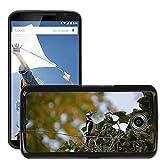 hello-mobile Bild Hart Handy Schwarz Schutz Case Cover Schale Etui // M00137320 Buntspecht Vogel // LG Google Nexus 6
