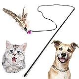 HOOPET® Katzenspielzeug Hundespielzeug mit Federn Spielangel