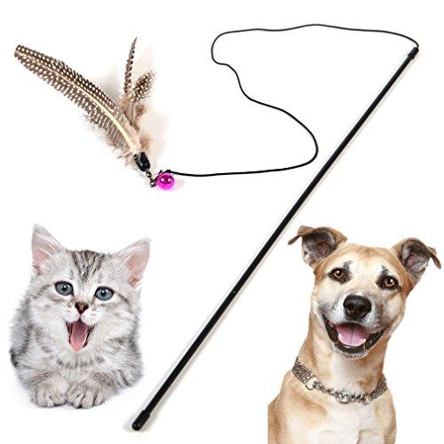 katzeninfo24.de HOOPET® Katzenspielzeug Hundespielzeug mit Federn Spielangel