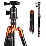 K&F Concept TM2534 Kit Trípode Flexible Cámara Reflex Extensible Unipod Monopod Aluminio con Rótula de Bola Placa Rápida Liberación Trípode Monopié para Canon Nikon Sony GoPro Cámara DSLR y DV, Naranja