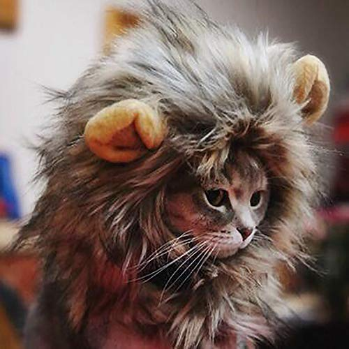 PIVBY Löwenmähnen-Kostüm für Katzen, Hunde, verstellbar, waschbar, bequem, Kostüm, Kostüm, Halloween, Weihnachten, Ostern, Party, Aktivität