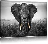 prachtvoller Elefant schwarz/weiß Format: 100x70 auf Leinwand, XXL riesige Bilder fertig gerahmt mit Keilrahmen, Kunstdruck auf Wandbild mit Rahmen, günstiger als Gemälde oder Ölbild, kein Poster oder Plakat