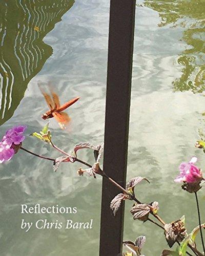 Reflections por Chris Baral