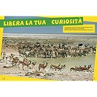 Gli-animali-della-Savana-Libro-puzzle-Ediz-illustrata-Con-puzzle