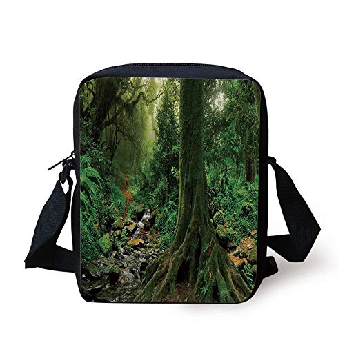 LULABE Apartment Decor,Rain Forest Scene with River in North Forest in Early Morning Humid Fog Print,Green Print Kids Crossbody Messenger Bag Purse (Insulated Rain Womens)