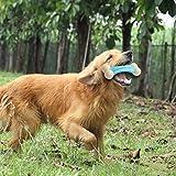 Anya Tianya - Rubber Chew Toys Knochen Beißen Molaren Trainging Pet Dog Spielzeug für Heimtierbedarf