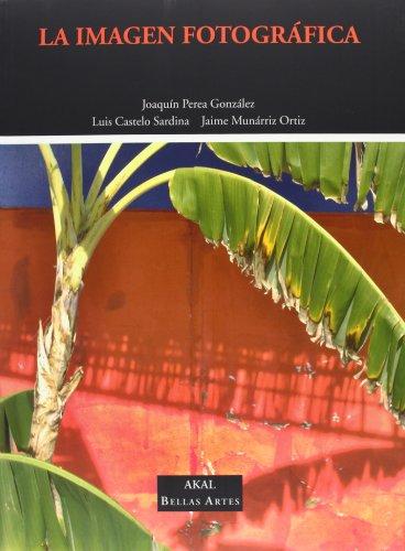 Descargar Libro La imagen fotográfica (Bellas Artes) de Luis Castelo Sardina