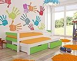 Wonderhome24 bambini letto estraibile con materasso e letto singolo contenitore incluso | europea | Ideale per ragazzi e ragazze | Eco pitture usato | massima sicurezza Green