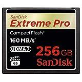 SanDisk Extreme Pro CompactFlash 256GB Speicherkarte (bis zu 160MB/s lesen)
