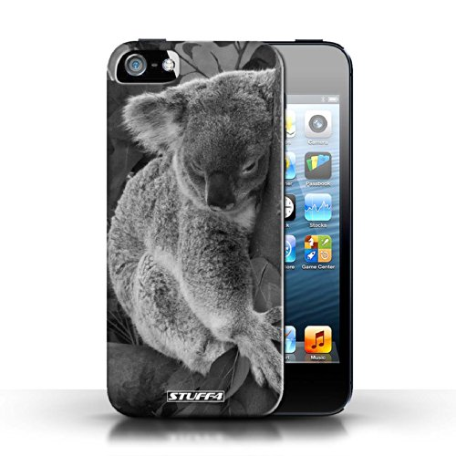 Hülle Case für Apple iPhone 5/5S / Faultier Entwurf / Zoo-Tiere Collection Koala