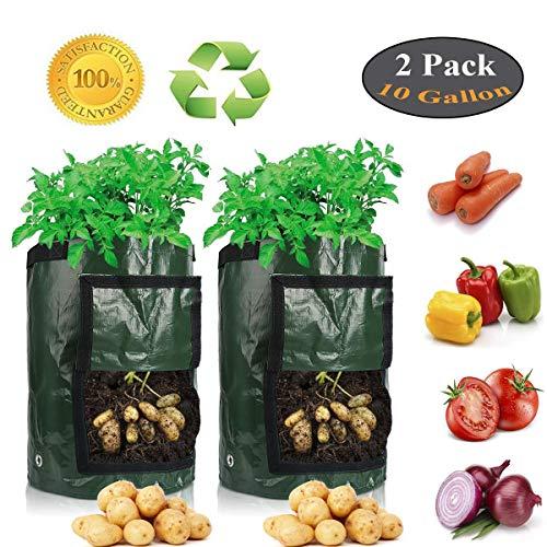 Lychee Kartoffeln Wachsende Tasche,35X45cm Pflanztasche,2 Stk 10 Gallonen-Garten Gemüse Pflanze Wachsende Tasche mit Griffen für Kartoffel Karotte Tomate Zwiebel