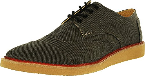 TOMS Brogues Homme
