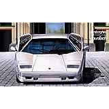 1/24 Enthusiast Model Series No.13 Lamborghini Countach 25th Anniversary (japan import)
