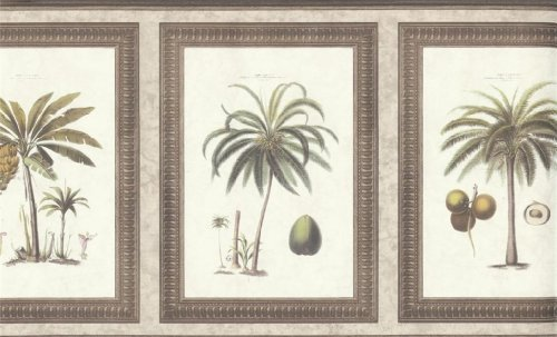 wallpaper-border-waverly-framed-palms-taupe-silver-by-the-wallpaper-and-border-store