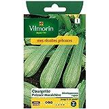Vilmorin - Sachet graines Courgette précoce maraichere