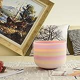 TOPFUND® Rainbow Colored, gefrostete Quarz Kristall Klangschale Ton F/Herz Chakra – 25cm - 5