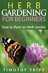 Herb Gardening For Beginners: How to Plant an Herb Garden