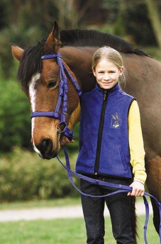 TRENSENZAUM azurblau mit Pferdchenstirnband Gr. Shetty inkl. Zügel