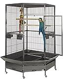 Liberta Raleigh angolare grande pappagallo gabbia antico
