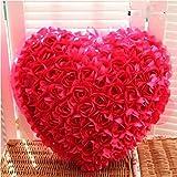 SKKY BELL 100 Red Roses Plush Pillow (Multicolour)