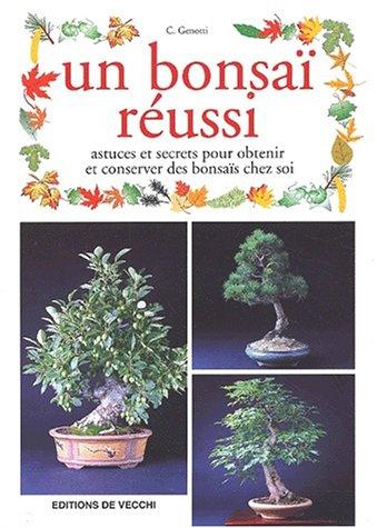 Un bonsaï réussi