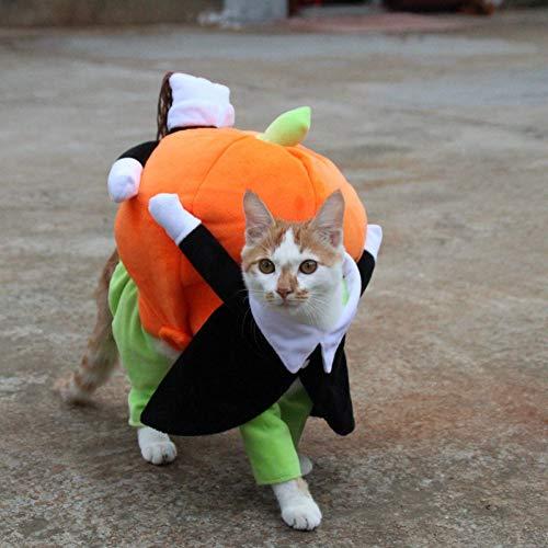LCWYP Haustier Halloween Lustige Haustier Katze Hund Kostüme Hund Bekleidung Kleidung Für Halloween Cosplay Bewegen Kürbis Kostüm Puppy Jacke Mantel Katze Hund - Katze Im Hut Hunde Kostüm Große