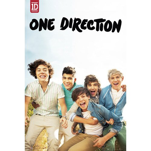 One Direction-Album Poster, 61x92 (Direction All Night Poster Up One)