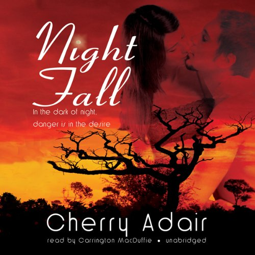 Night Fall  Audiolibri